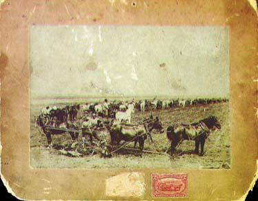 286 design - US Postage Stamps - Farming in the West - Western Farming